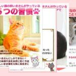 【無料電子書籍:町野由布子さん】大切な猫ちゃんがいつまでも美しく健康でいてくれる電子書籍【脱アナメルマガ】